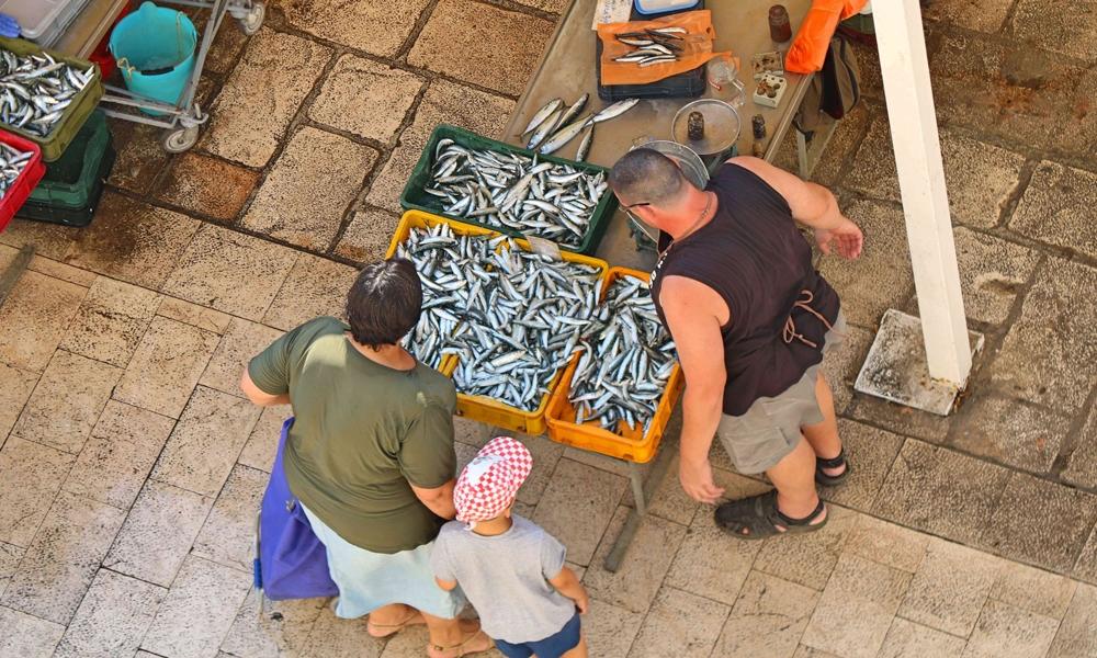 Fish market in Croatia